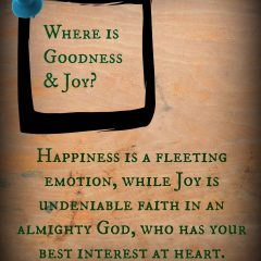 Happiness is a fleeting emotion, while joy is an undeniable faith in an almighty God, who has your best interest at heart! www.spreading-joy.org