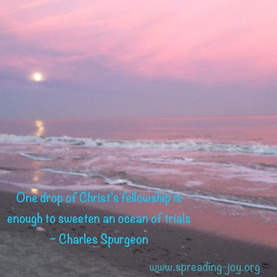 one drop of Christs fellowship is enough to sweeten an ocean of trials
